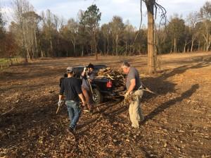 第一次捡树枝